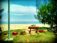 45400 Sekinchan, Selangor https://goo.gl/maps/jtG4jvUZvs32  #travel #holiday #traveling #trip #Asian #Malaysia #旅行 #度假 #亚洲 #马来西亚 #วันหยุด #การเดินทาง #ホリデー #휴일 #여행 #Sekinchan #Selangor #outdoor #海滩 #beach #pantai #tree #Touristattractions #праздник #путеш