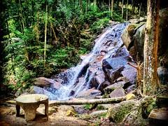 https://goo.gl/maps/QX6TYMA95Qx  #travel #holiday #trip #traveling #旅行 #度假 #亞洲 #Asian #Malaysia #馬來西亞  #여행 #ホリデー #휴일 # #праздник #путешествие #วันหยุด #การเดินทาง #Waterfall #瀑布 #น้ำตก #водопад  #폭포 #滝 #airterjun #Jeramtoi