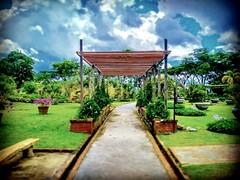 Jublee Recreation Ground, 93450 Kuching, Sarawak https://goo.gl/maps/SoEikoQNncP2  #travel #holiday #trip #traveling #旅行 #度假 #亞洲 #Asian #Malaysia #馬來西亞  #여행 #ホリデー #휴일 #праздник #путешествие #วันหยุด #การเดินทาง #古晉 #travelMalaysia #Kuching #park #公園 #パーク