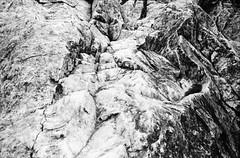 大蛇嵓の岩肌