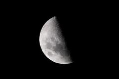 La luna nuevamente, siempre bienvenida (cuarto creciente).
