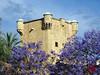 Torres de l'Horta d'Alacant -3