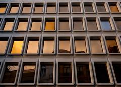 Windows of Brussels