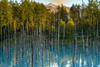 Photo:青い池 I By