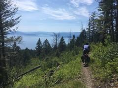 Auf dem coolen Beardance Trail: Aussicht auf den Flathead Lake