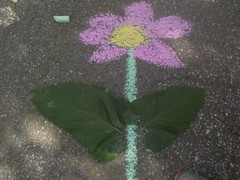"""Chalk Art Photography • <a style=""""font-size:0.8em;"""" href=""""http://www.flickr.com/photos/145215579@N04/42030190535/"""" target=""""_blank"""">View on Flickr</a>"""