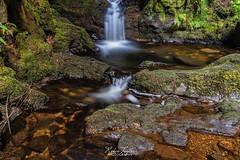 Puck's Glen Waterfall
