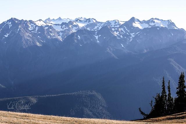 Hurricane Ridge Trail, Washington State