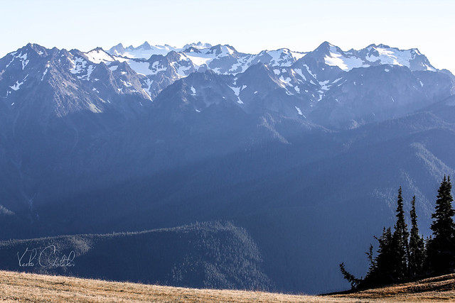 Hurricane Ridge Trail, Washington State