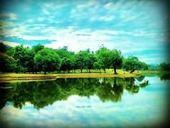 Taman Tasik Taiping, 34000 Taiping, Perak https://goo.gl/maps/DTTXHDPa8S52 #reizen #vakantie #voyage #viaggio #viaje #resa #Semester #Fiesta #Vacanza #Vacances #Reise #Urlaub #sjö #lago #Lac #see #meer #Asia #Malaysia #Taiping #太平湖公园 #travel #holiday #tri