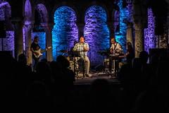 Ervin Baucic Blues Band_foto Emanuela Tomino