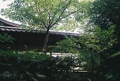 庭の入り口