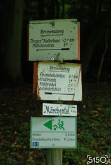 signs13