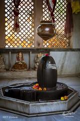 Vraja Parikrama