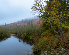 Sumner Stream, Misty Mountains