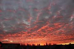 Stevenage Sunset
