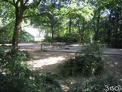IMG_2495_Burgers_Zoo