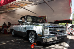 C10s in the Park-4