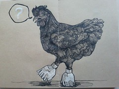 5_chicken