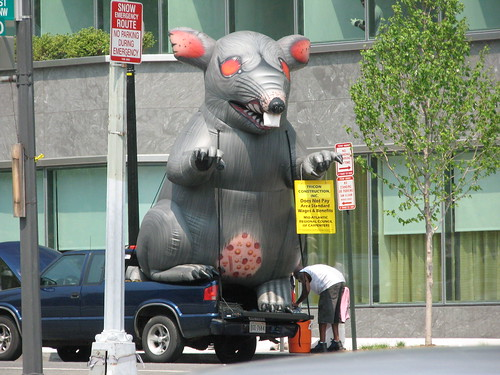 Protesters Are Back with Inflatable Rat