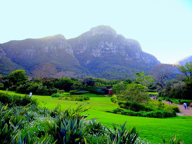 South Africa. Cape Peninsula, Kirstenbosch National Botanical Garden