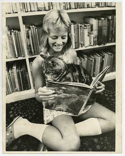 Public Library Cat