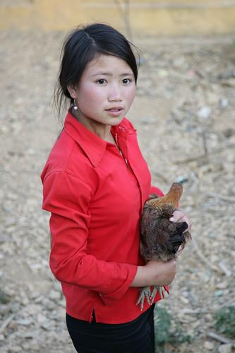 Hmong girl hold native black chicken of Viet Nam