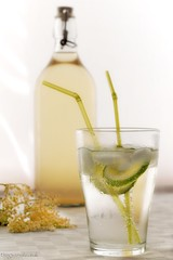 Elderflower Cordial 2010