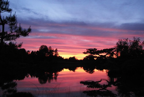 Sunset from the Japanese Garden VIII