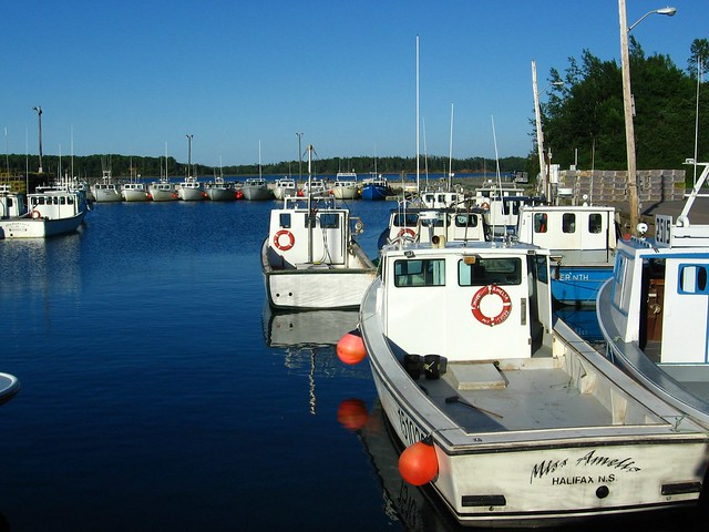 Lobster Boats II