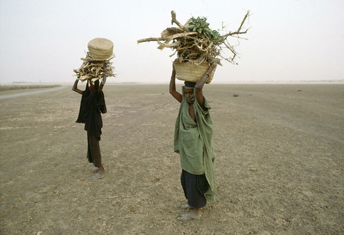 Mali Women Collect Firewood on Dry Riverbed