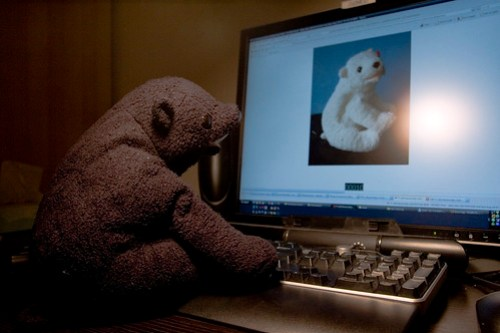 Online Dating for Bears