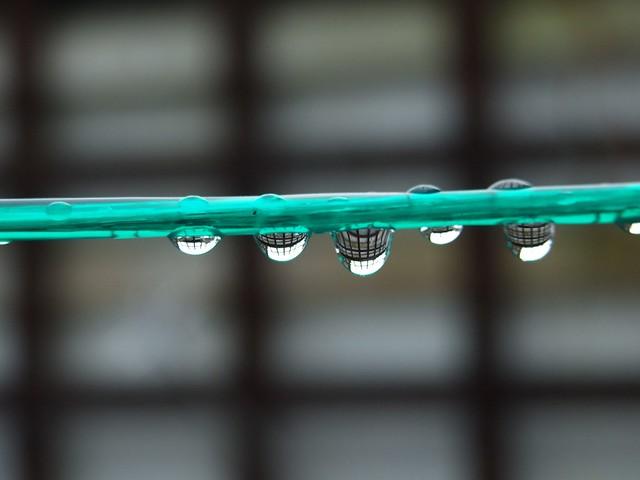 Rain Drop