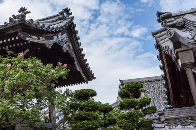 Un paseo por Hikone-32