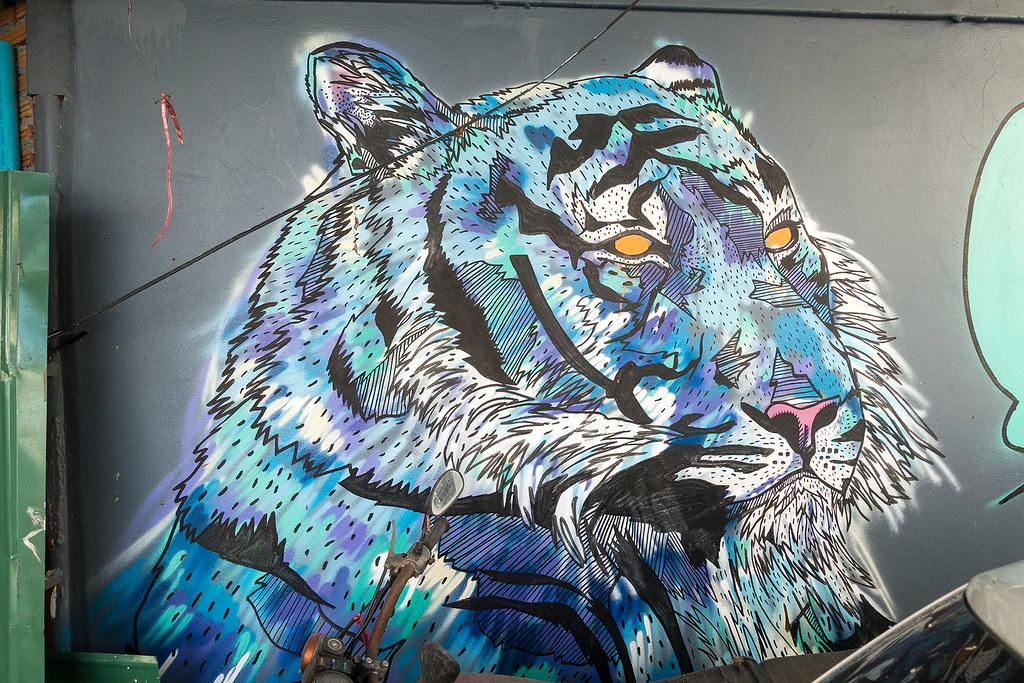 Chiang Mai Street Art 04