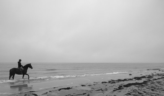 Horseback riding at the beach