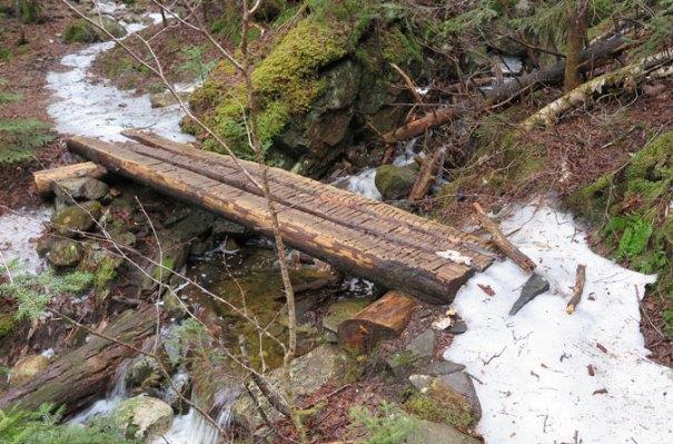 Gale River Trail Logs