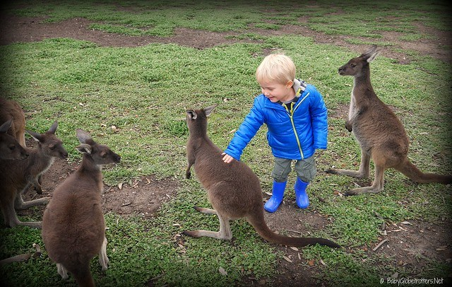 Family Eco tourism Australia