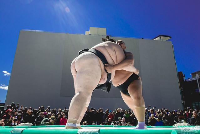 040316_Sumo Wrestlers_222