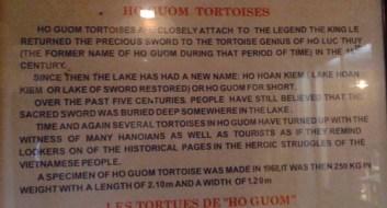 Tortoise info