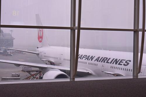 外から見たJALの機体