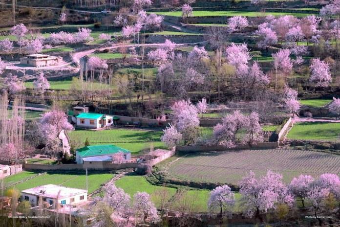 Chunda Valley Baltistan