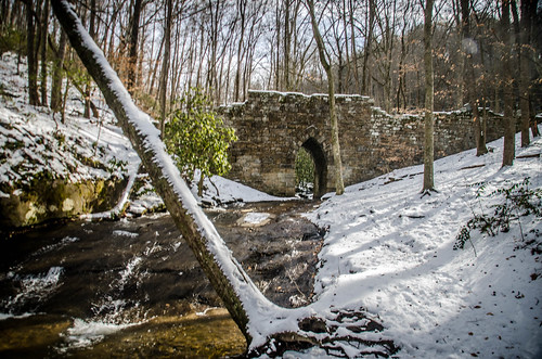 Poinsett Bridge Heritage Preserve-017