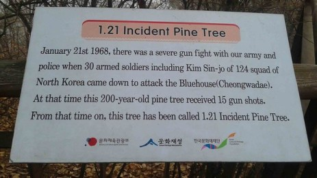 Sign about the 1.21 tree