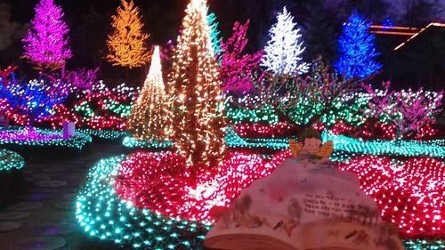Lights at Pocheon Herb Village