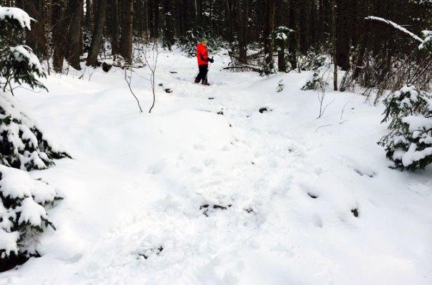 Winslow Trail Climb