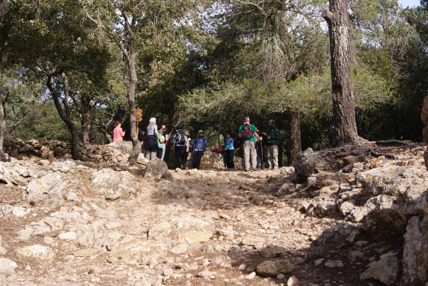 Ruta larga entorno a Valldemossa