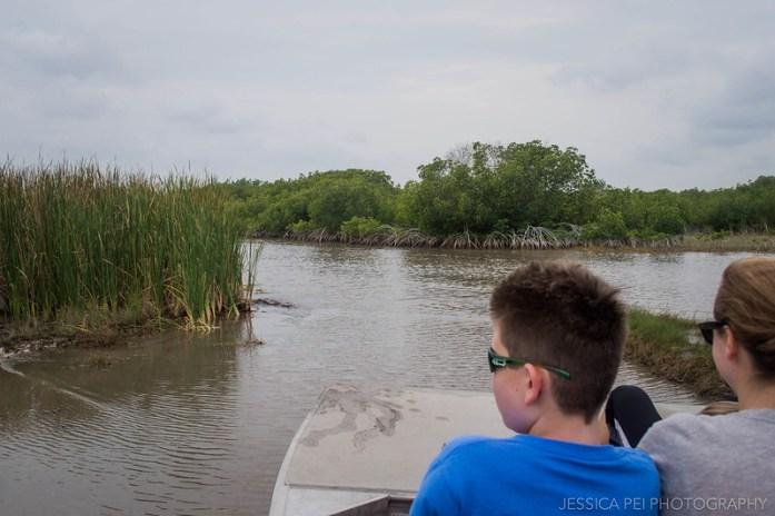 Florida Everglades Grasslands Tour