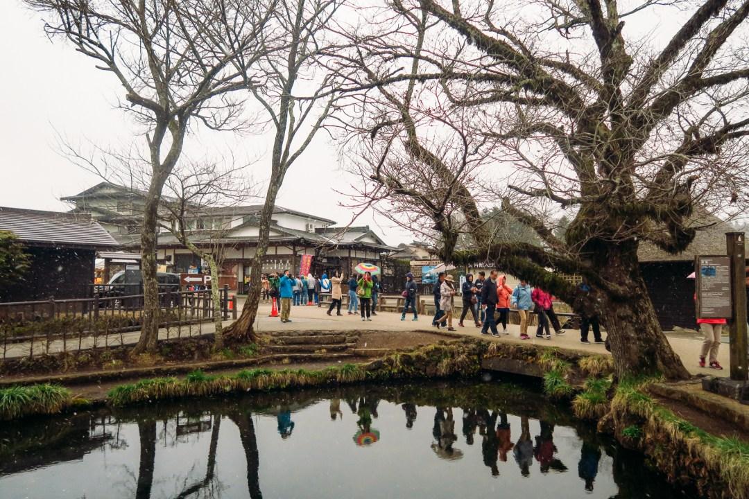 Fuji Yokohama (56 of 56)