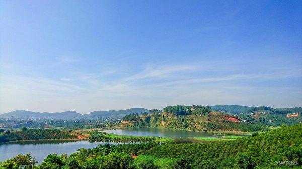 Coffee Plantation - Da Lat, Vietnam.jpg